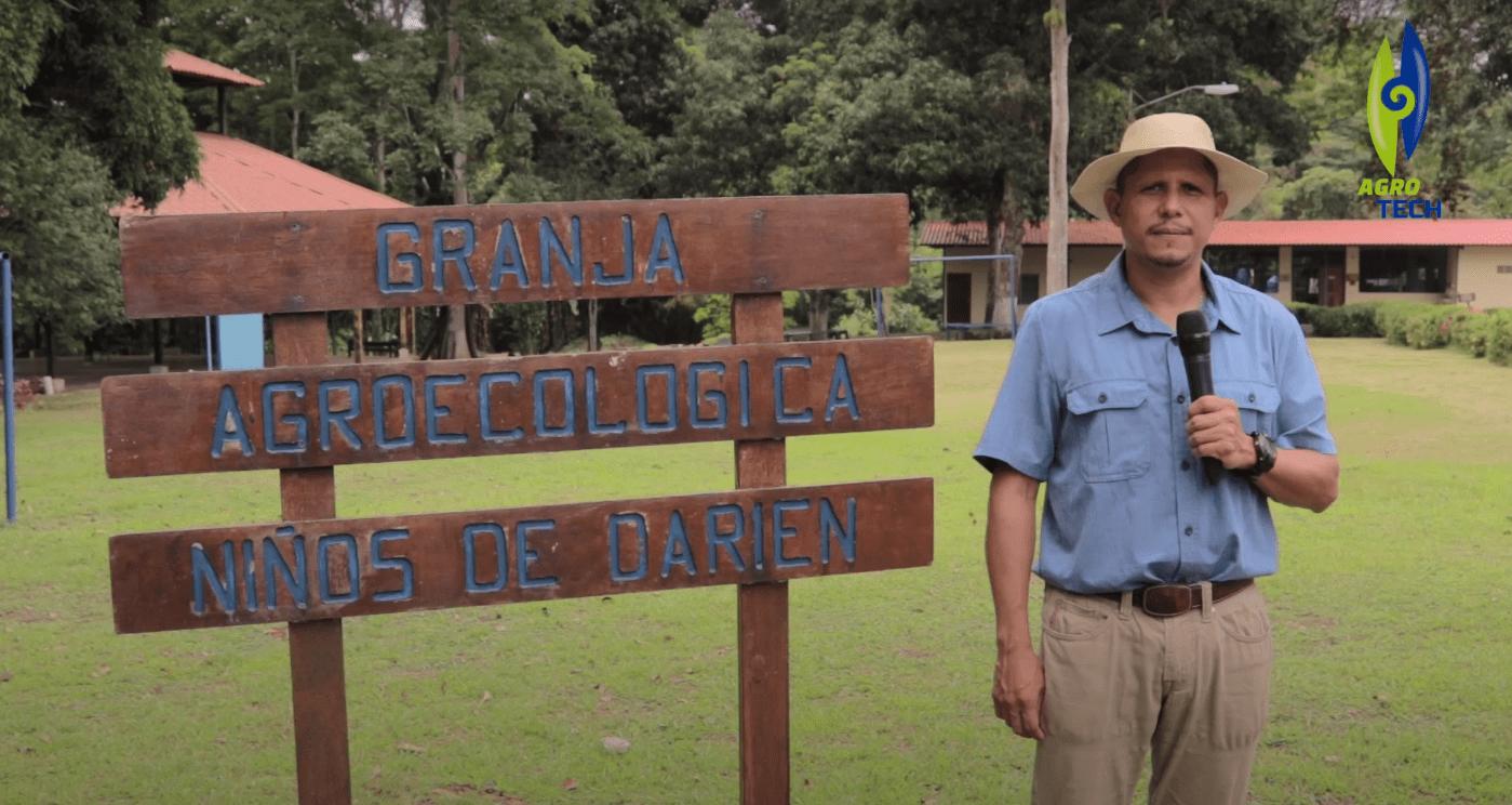 VISITA A LA GRANJA AGROECOLOGICA NIÑOS DE DARIEN.